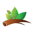 Tree branch with leafs vector image