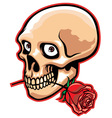 skull and rose vector image vector image