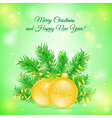 Christmas card with two balls vector image