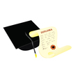 academic hat with diploma vector image vector image