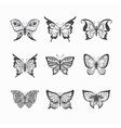 Collection of stylized butterflies vector image