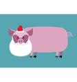Santa Claus Pig Farm animal with beard and vector image