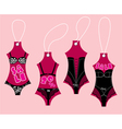 Set of underwear collection for women vector image