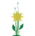 yellow flower vector image vector image