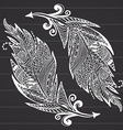 Ornamental hand drawn sketch of feathers in vector image