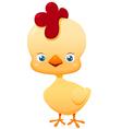 Cute little chicken vector image