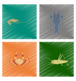 assembly flat shading style shrimp vector image