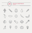 Paleo Food vector image