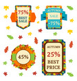super sale extra bonus autumn banners text label vector image