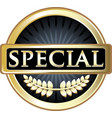 special gold icon vector image