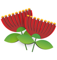Pohutukawa Flower vector image