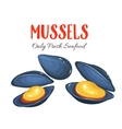 Mussels in cartoon style vector image