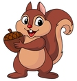 Squirrel cartoon with nut vector image vector image