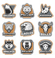 colorful team sport animals logotypes set vector image