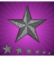 silver star with elements of sequins vector image
