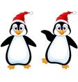 Funny penguin cartoon vector image