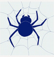 spider and spider web icon vector image
