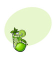 whole lime and glass of juice mojito cocktail vector image