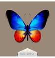 butterfly with blue-orange wings vector image
