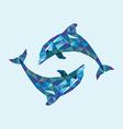 Dolphin low polygon vector image