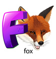 A letter F for fox vector image