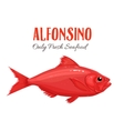 Alfonsino Fish in cartoon vector image vector image
