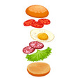 burger with ingredients isolated on white crispy vector image