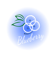 logo blueberry isolated vector image