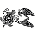 turtles vector image vector image