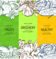vegan healthy organic banner set with vector image