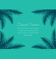 frame with palm leaves vector image