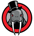 walrus mascot vector image vector image