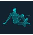 3D Model of Man Polygonal Design 3d grid vector image vector image