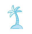 silhouette palm with coconuts and leaves vector image