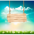spring nature background with green grass and vector image