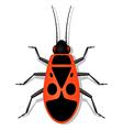 Soldier-bug vector image