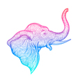 Head of a elephant in profile line art boho design vector image