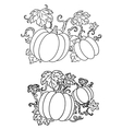 Black and white line drawings of pumpkins vector image