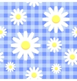 Chamomiles on blue checkered background vector image vector image