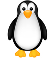 funny penguin cartoob vector image