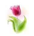 a tulip vector image vector image