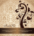 brown damask card vector image vector image