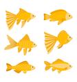 Goldfish set isolated on white background Yellow vector image