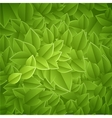 leaves-texture vector image vector image