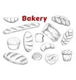 Bakery sketches with bread and pastry vector image