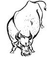 ox vector image