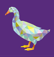 Duck lowpoly vector image