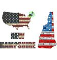 USA state of New Hampshire on a brick wall vector image