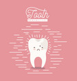 kawaii caricature caries on one side of the tooth vector image