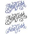 vintage new york calligraphic handwritten vector image